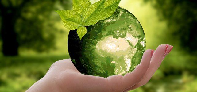 Gør dit hjem mere miljøvenlig